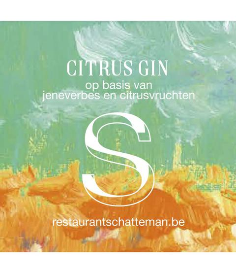 Front Citrus gin